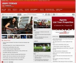 Johny-Storage-Red-Blogger-Template