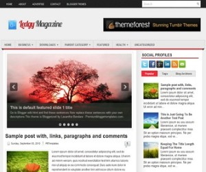 Ledgy-Blogger-Template