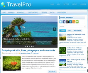 TravelPro-Blogger-Template