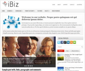 iBiz-Blogger-Template